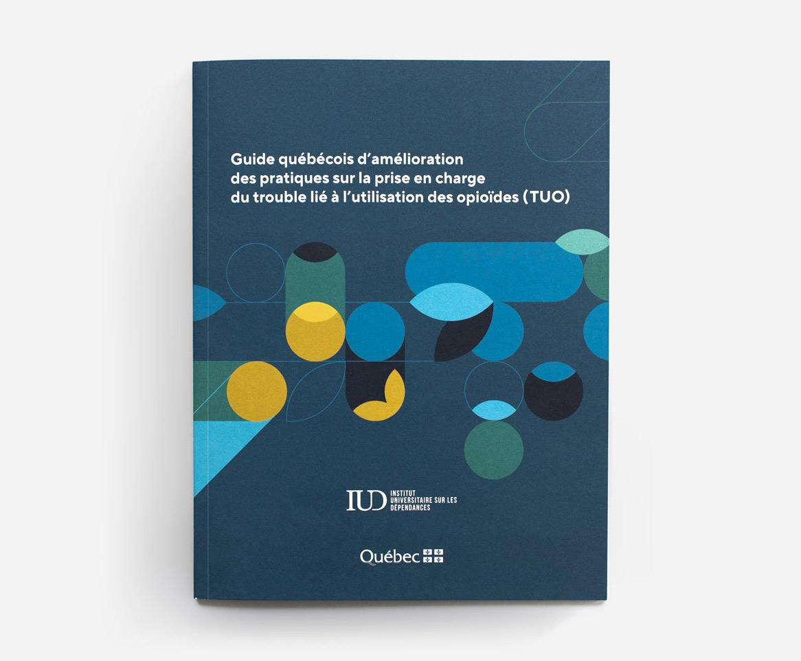 Guide québécois d'amélioration des pratiques sur la prise en charge du trouble lié à l'utilisation des opioïdes (TUO)